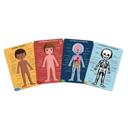 Cartes éducatives pour tout connaître du corps humain-detail